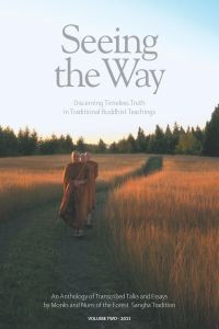 Seeing the Way: Volume Two