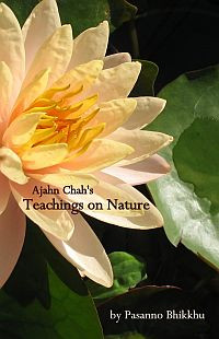 Ajahn Chahs Teachings On Nature