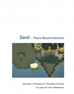 Santi - Peace Beyond Delusion