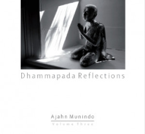 Dhammapada Reflections Volume 3