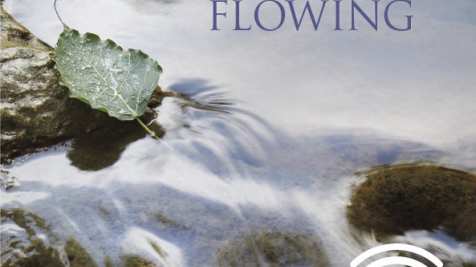 Stillness Flowing Audiobook Released